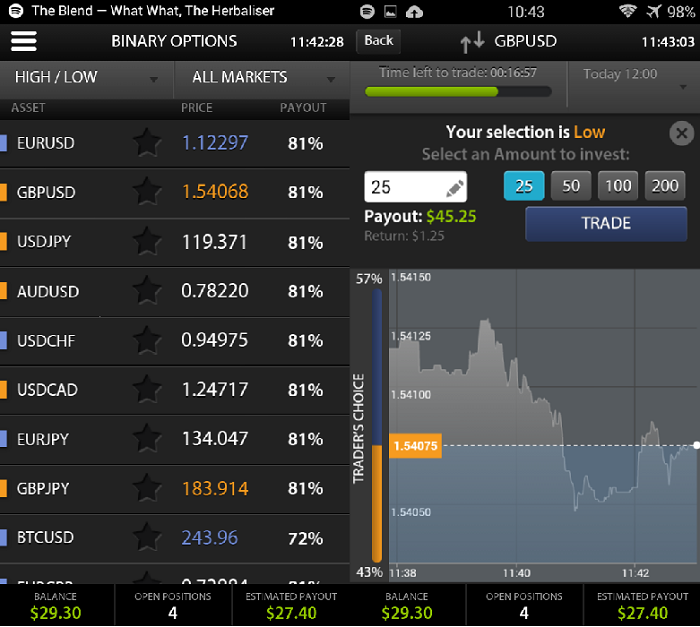 Panda TS binary options mob