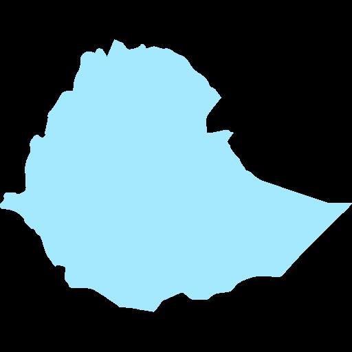 Ethiopian Forex Brokers